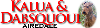 Airedale KALUA & DABSQUOUI - airedalequebec.com -